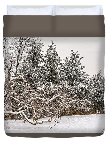 Trees Of Winter Duvet Cover