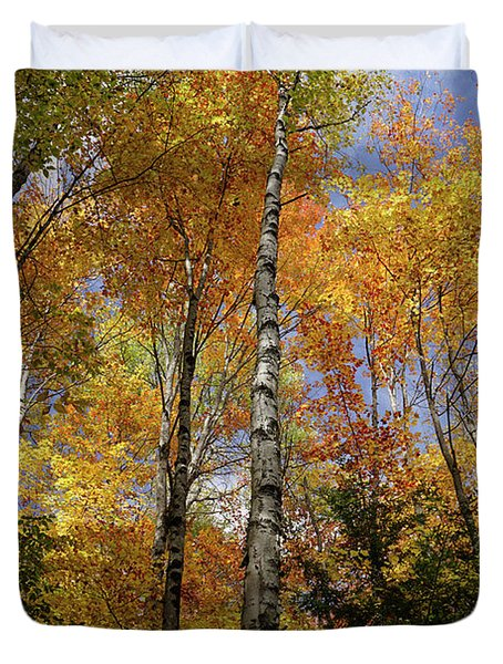 Trees On The Lincoln Woods Trail Duvet Cover