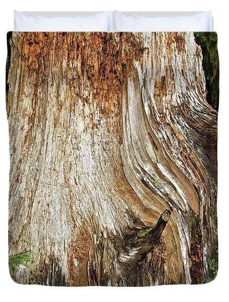 Trees On The Trails - Olympic National Park Wa Duvet Cover by Christine Till