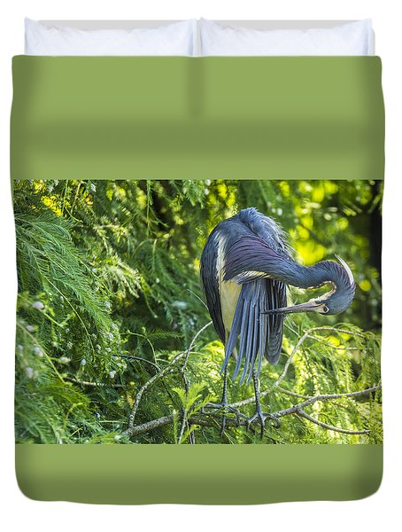 Duvet Cover featuring the photograph Tri-colored Heron Grooming by Paula Porterfield-Izzo