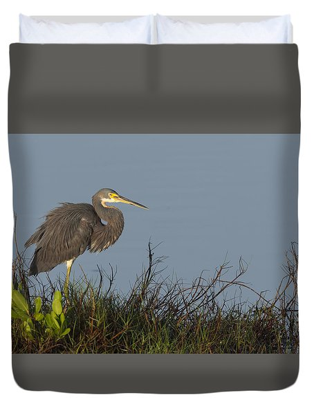 Tri-colored Heron In The Morning Light Duvet Cover
