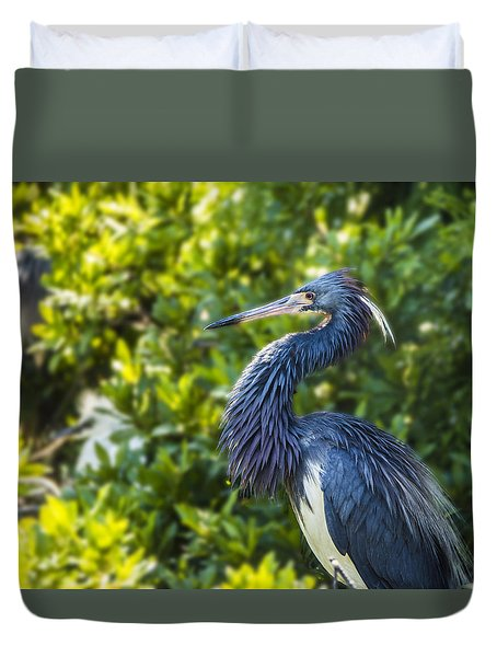 Duvet Cover featuring the photograph Tri-colored Heron Plumage by Paula Porterfield-Izzo