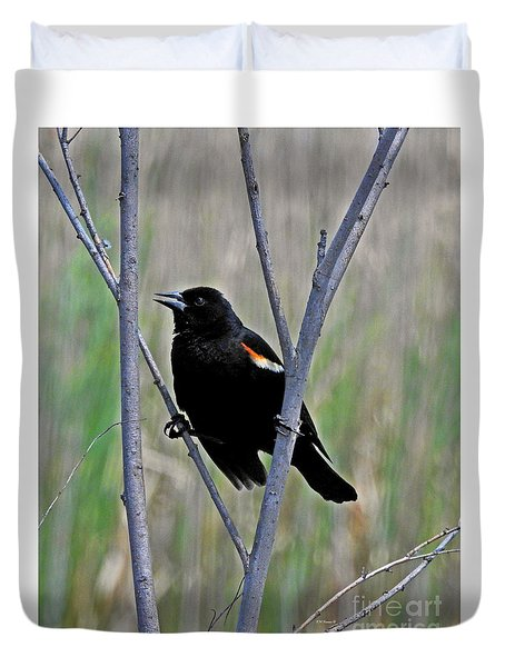 Tricolored Blackbird Duvet Cover