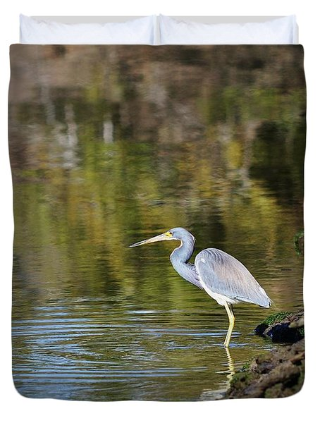 Tricolored Heron Fishing Duvet Cover by Al Powell Photography USA