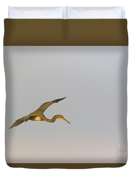 Tricolored Heron In Flight Duvet Cover by Louise Heusinkveld