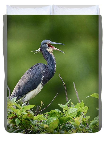 Tricolored Herons Call Duvet Cover