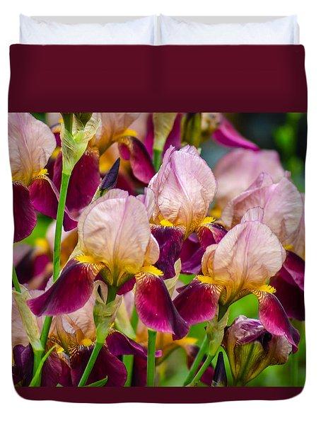 Tricolored Irisses Duvet Cover