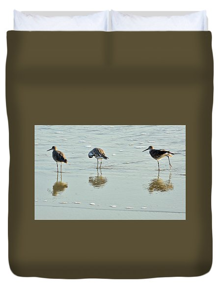 Trio Of Willets On Jekyll Duvet Cover by Bruce Gourley