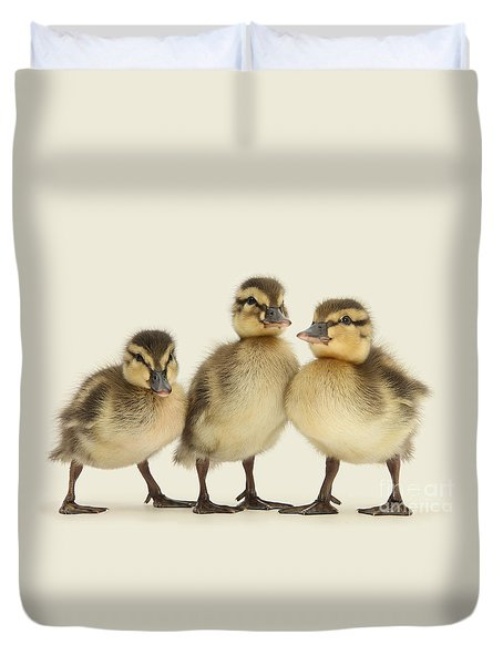 Triple Ducklings Duvet Cover