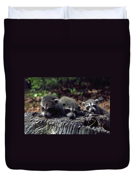 Triplets Duvet Cover by Sally Weigand