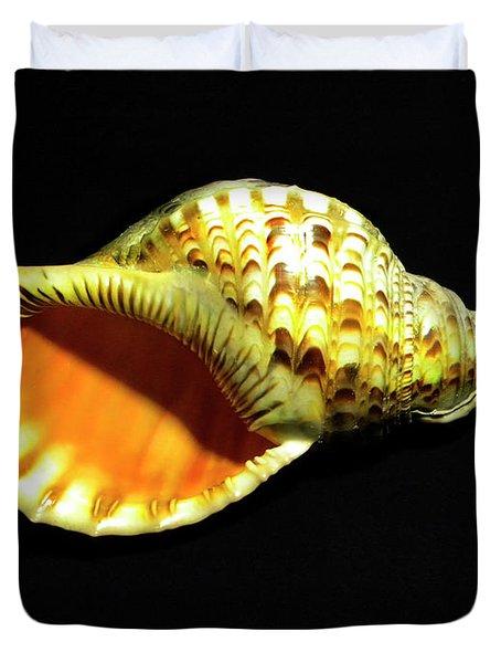 Triton Trumpet Seashell Cymatium Tritonis Duvet Cover