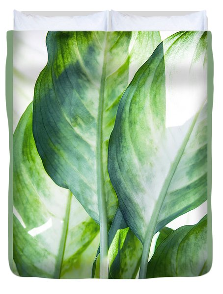 Tropic Abstract  Duvet Cover