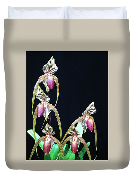 Tropical Lady Slipper 2 Duvet Cover by Shirley Sirois