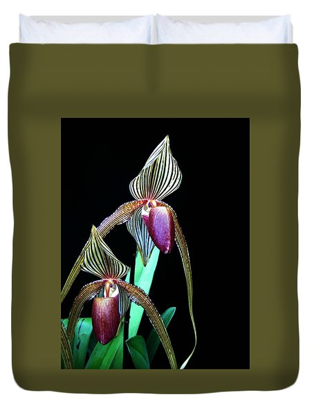 Tropical Lady Slipper Duvet Cover by Shirley Sirois
