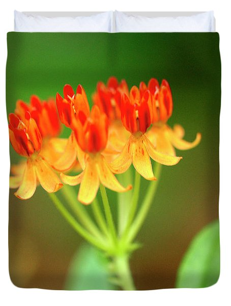 Tropical Milkweed Duvet Cover