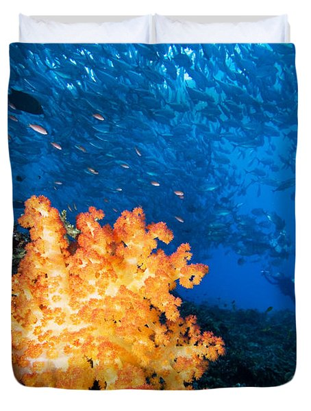 Tropical Reef Scene Duvet Cover by Dave Fleetham - Printscapes