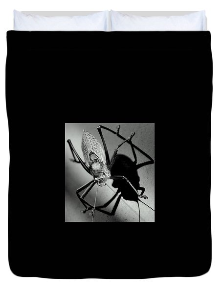 True Katydid Duvet Cover