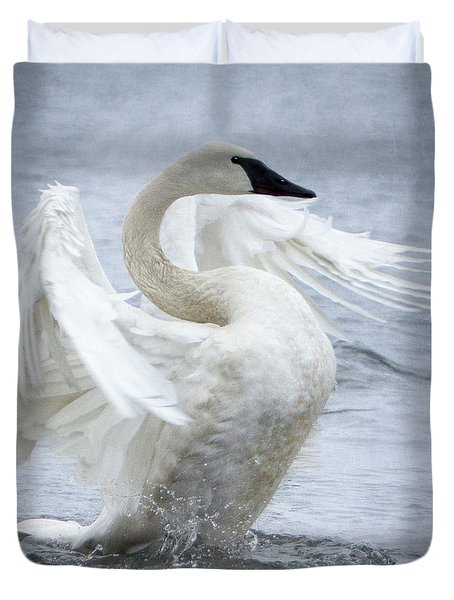 Trumpeter Swan - Misty Display 2 Duvet Cover
