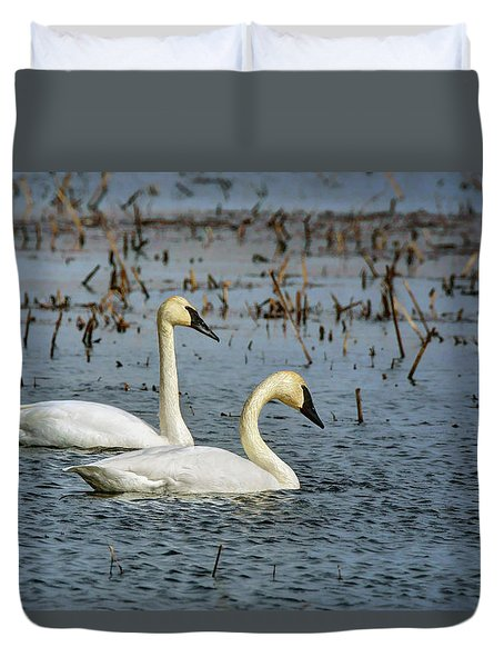 Duvet Cover featuring the photograph Trumpeter Swan - Pair by Nikolyn McDonald