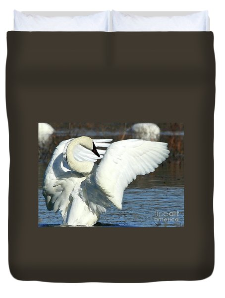 Trumpeter Swan Duvet Cover by Paula Guttilla