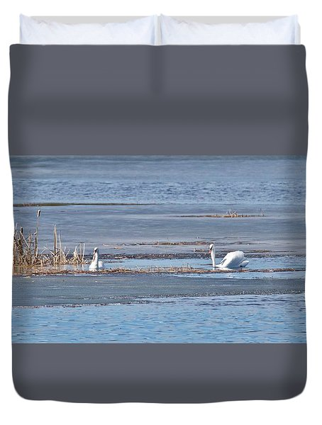 Duvet Cover featuring the photograph Trumpeter Swans 0933 by Michael Peychich