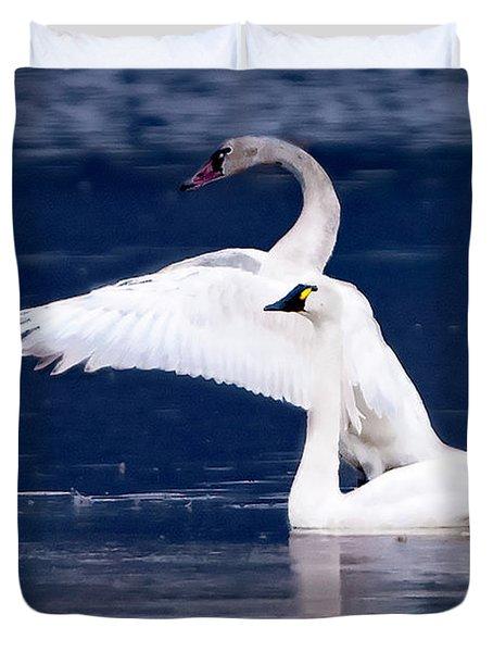 Trumpeter Swans Duvet Cover