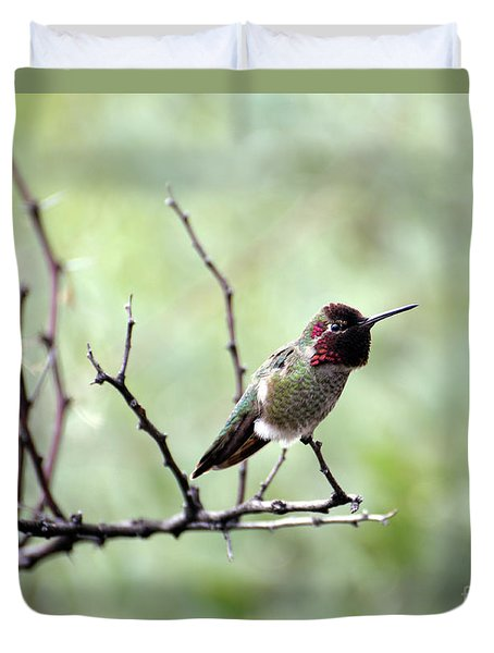 Trumpeting Hummingbird Duvet Cover