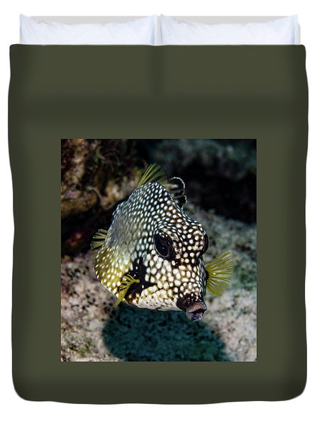 Duvet Cover featuring the photograph Trunkfish Portrait by Jean Noren