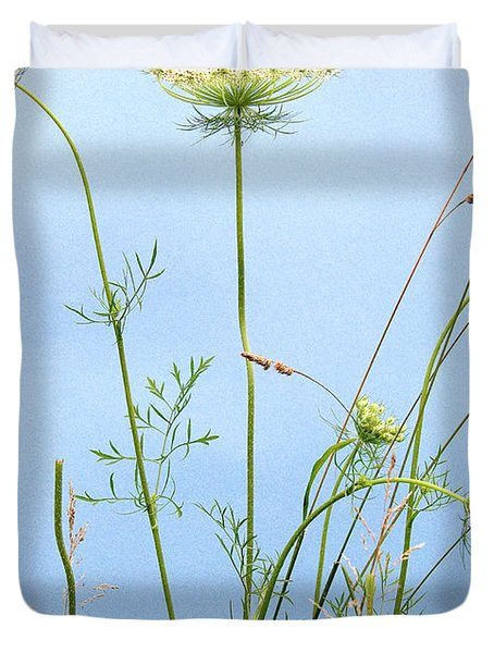 Tuft Of Queen Anne's Lace Duvet Cover