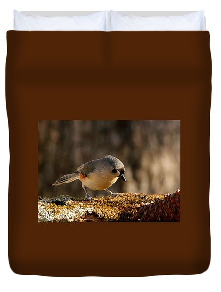 Tufted Titmouse In Fall Duvet Cover by Sheila Brown