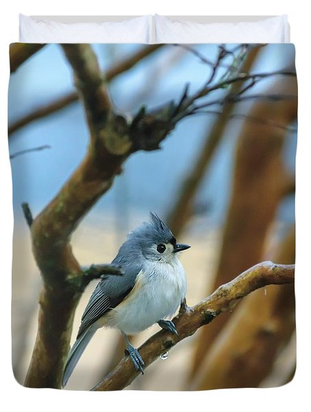 Tufted Titmouse In Tree Duvet Cover