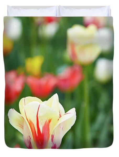 Tulip Bed Duvet Cover