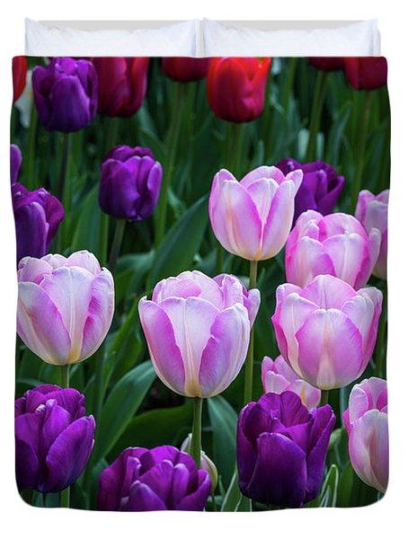 Tulip Blush Duvet Cover