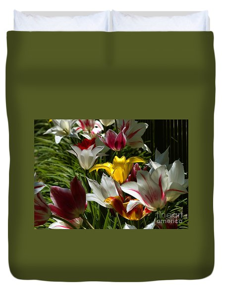 Duvet Cover featuring the photograph Tulip Border by Kenny Glotfelty