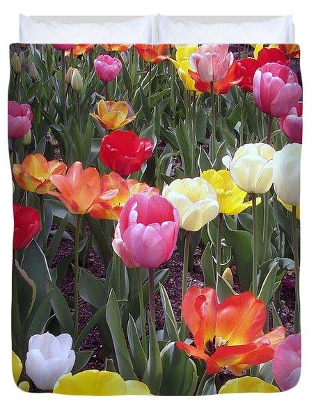 Tulip Color Burst Duvet Cover