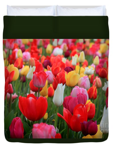 Duvet Cover featuring the photograph Tulip Color Mix by Peter Simmons