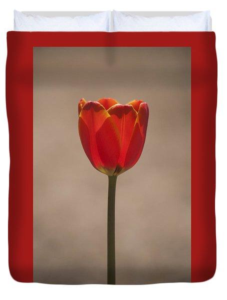 Tulip En Fuego Duvet Cover