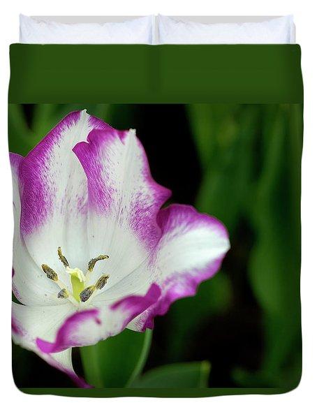 Duvet Cover featuring the photograph Tulip Flower by Pradeep Raja Prints