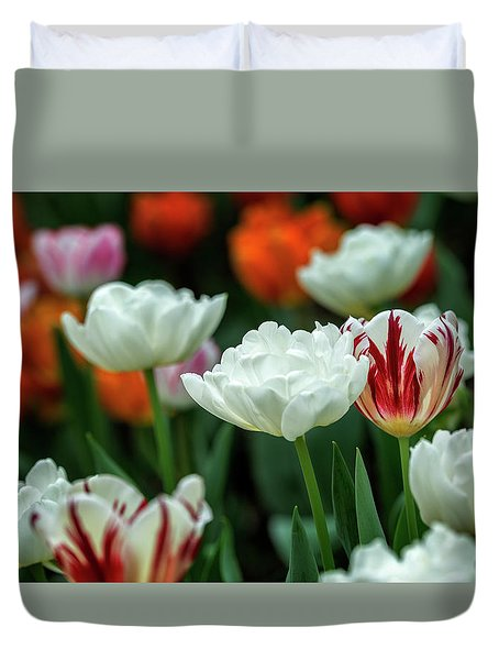 Duvet Cover featuring the photograph Tulip Flowers by Pradeep Raja Prints