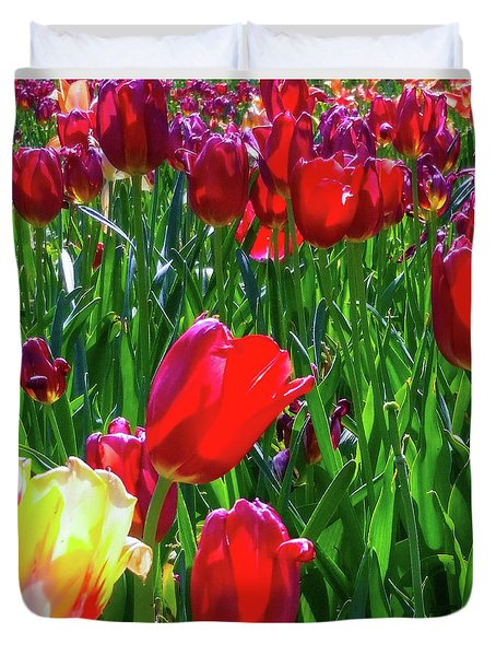 Duvet Cover featuring the photograph Tulip Garden In Bloom by D Davila