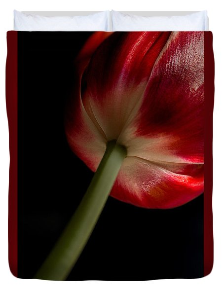 Tulip In Window Light Duvet Cover