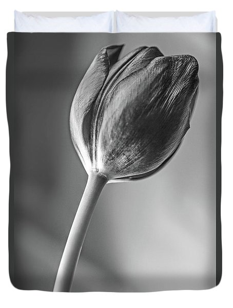 Tulip Shadow And Light Duvet Cover