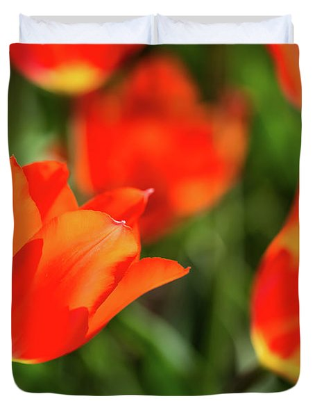 Tulip Time 32 Duvet Cover