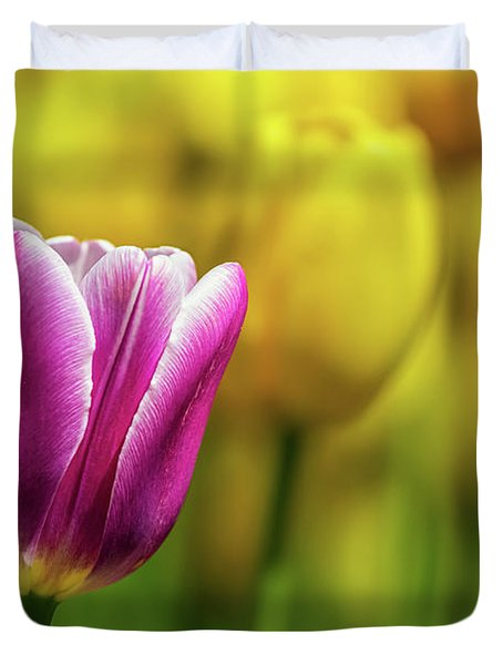 Tulip Time 35 Duvet Cover