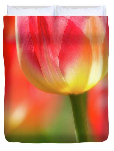 Tulip Time 42 Duvet Cover