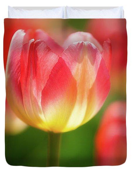 Tulip Time 43 Duvet Cover