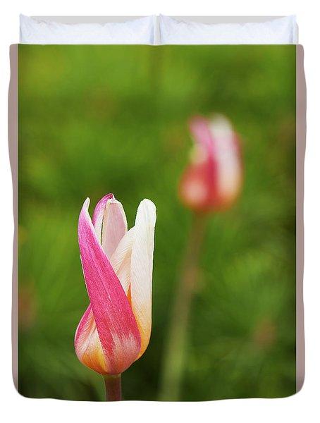 Tulip Time Duvet Cover
