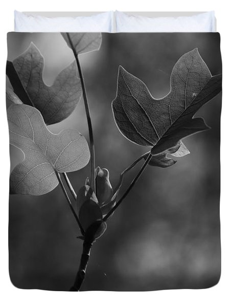 Tulip Tree Leaves In Spring Duvet Cover