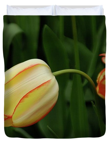 Nodding Tulips Duvet Cover
