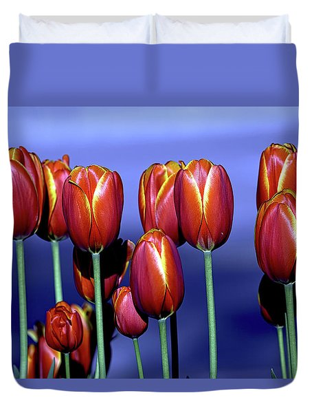 Tulips At Attention Duvet Cover